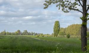 landschap Schoonhoven